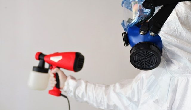 Pest Controlling and Cleaning Services