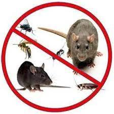 rodentcontrol