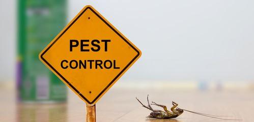 Zippcogm pest control service